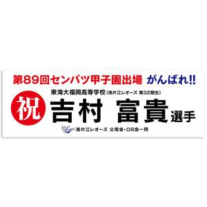 baseball_banner-300x300